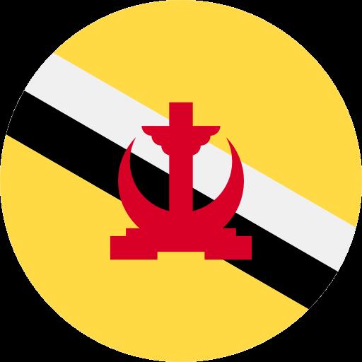 ESTA for Bruneian Citizens