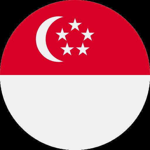 ESTA for Singaporean Citizens